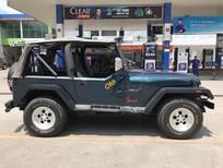 Bán xe Jeep Wrangler MT năm sản xuất 1995, màu xanh lam, xe nhập