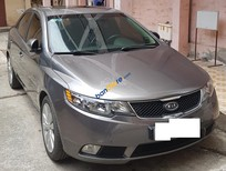 Cần bán lại xe Kia Forte sản xuất 2009, màu xám, nhập khẩu