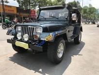 Bán xe Jeep Wrangler đời 1995, xe nhập mới 100% có hải quan, ngay chủ