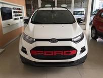 Ford Ecosport 2017- nhiều ưu đãi trong tháng