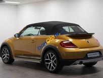 Bán ô tô Volkswagen Beetle Dune đời 2017, xe nhập