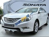 Bán xe Hyundai Sonata đời 2010, màu trắng