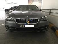 Bán 2016 BMW 520i, màu bạc, nhập khẩu nguyên chiếc chính hãng