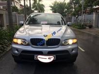 Bán BMW X5 đời 2004, màu bạc, xe đăng ký lần đầu năm 2009