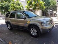 Bán Ford Escape đời 2004, màu vàng, xe đẹp