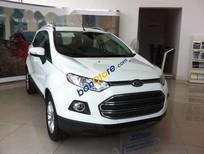 Cần bán Ford EcoSport AT đời 2017, màu trắng