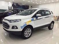 Bán Ford EcoSport Titanium đời 2017, màu trắng