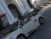 Bán Volkswagen New Beetle 2.5 AT đời 2009, màu kem (be), nhập khẩu