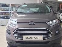 Ford Ecosport titanium giá tốt nhất,xe đủ màu giao ngay hỗ trợ vay vốn tối đa 80% giá xe,