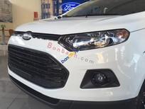 Bán Ford EcoSport đời 2017 giá cạnh tranh