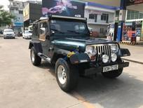 Cần bán lại xe Jeep Wrangler sản xuất 1995, màu xanh lam, xe nhập