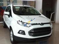 Bán ô tô Ford EcoSport 1.5 AT Titanium đời 2017, màu trắng