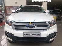 Bán Ford Everest MT 2018, nhập khẩu nguyên chiếc, giá tạm tính 900 triệu