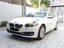 Cần bán gấp BMW 5 Series 520i đời 2015, màu trắng, xe nhập còn mới