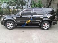 Cần bán xe Ford Escape 2.3 đời 2005, màu đen, 326tr