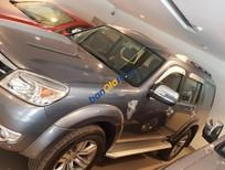 Cần bán Ford Everest AT đời 2009, màu xám, giá 530tr
