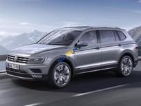 Bán ô tô Volkswagen Tiguan năm sản xuất 2018, nhập khẩu