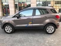 Bán Ford EcoSport năm 2015, màu xám ít sử dụng