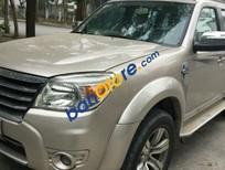 Bán lại xe Ford Everest AT năm sản xuất 2009