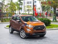 Ford EcoSport 2018 trả góp, đưa trước 100tr nhận xe, tặng bảo hiểm, phim cách nhiệt