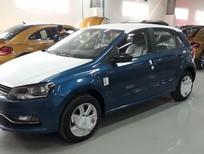 Bán ô tô Volkswagen Polo E đời 2018, hai màu, xe nhập