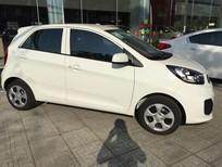 Bán xe Kia Morning màu trắng mới 100% tại Đồng Nai. Giá 290tr, ngân hàng hỗ trợ vay đến 80%