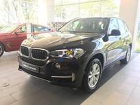 Cần bán xe BMW X5 sản xuất 2017, màu nâu, nhập khẩu nguyên chiếc