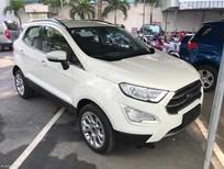 Bán xe Ford Ecosport giá khuyến mãi cực sốc liên hệ 0901.979.357 - Hoàng
