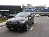 Cần bán BMW X4 xDriver20i đời 2017, xe nhập