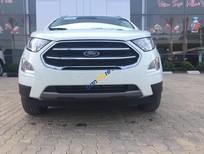 Bán Ford EcoSport 1.5 Ambiente MT sản xuất 2018, màu trắng, 545 triệu