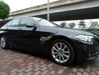 Bán ô tô BMW 5 Series 520i đời 2017, xe nhập