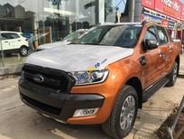 Cần bán xe Ford Ranger Wildtrak năm sản xuất 2018, nhập khẩu nguyên chiếc, giá chỉ 925 triệu