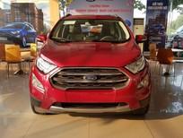 Bán Ford EcoSport Titanium 2018 giá rẻ nhất Sài Gòn, giao xe tận nơi - 0903.160.882
