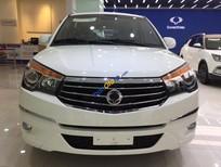 Bán xe Ssangyong Stavic đời 2017, xe nhập nguyên chiếc, giá chỉ 980 triệu