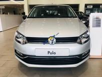 Bán Volkswagen Polo Hatchback giá tốt, giao toàn quốc, trả trước chỉ 150tr - 090.364.3659