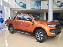 Cần bán Ford Ranger Wildtrak 3.2 năm 2018, nhập khẩu, giá 925tr