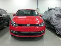 Bán xe Volkswagen Polo 1.6L sản xuất 2017, màu đỏ, xe nhập, 695tr