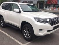 Toyota Land Cruiser Prado 2.7L VX (2018) nhập khẩu, giao xe sớm, hỗ trợ vay tới 85% giá trị xe, Hotline 0987404316