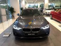 Cần bán BMW 3 Series 320i LCI sản xuất 2018, màu nâu, nhập khẩu nguyên chiếc