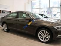 Bán Volkswagen Passat Bluemotion, màu nâu, nội thất kem, nhập khẩu chính hãng