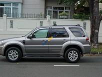 Bán Ford Escape sản xuất 2009, màu bạc số tự động, giá 456tr