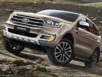 Bán Ford Everest sản xuất năm 2018, màu xám, nhập khẩu