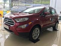 Bán xe Ford Ecoport bản 1.0 Titanium màu đỏ. Có xe giao ngay đủ màu, Lh 0965423558