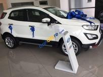 Bán Ford EcoSport năm sản xuất 2018, màu trắng, xe nhập