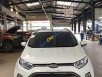 Bán Ford EcoSport Titannium sản xuất 2015, màu trắng