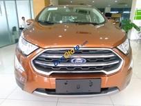 Bán Ford EcoSport Titanium 1.0L Ecoboost năm sản xuất 2018, 669 triệu