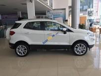 Chương trình khuyến mại Ford Ecosport cực lớn T11/2018. LH 0965423558
