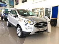 Bán Ford EcoSport Titanium năm sản xuất 2018, màu bạc, giá tốt