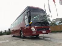 Cần bán Hyundai Universe Tracomeco sản xuất 2018, màu đỏ, nhập khẩu nguyên chiếc