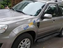 Bán Ford Escape XLT 4×4 AT model 2011 sx 2010 màu xám, số tự động tuyệt đẹp